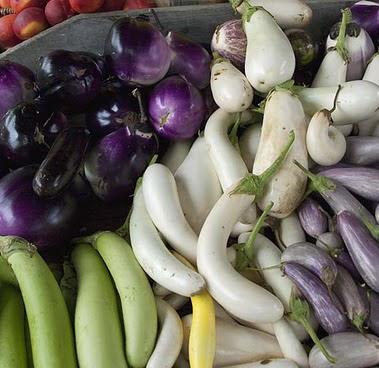 EggplantView