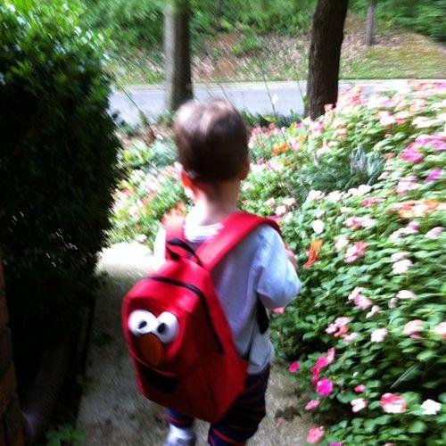 Charlie backpack